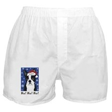 Conway Mistletoe Boxer Shorts