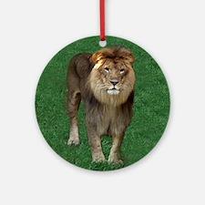 Kenya, African Lion Ornament (Round)