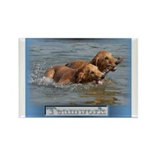 Golden Retriever Teamwork Rectangle Magnet (10 pac
