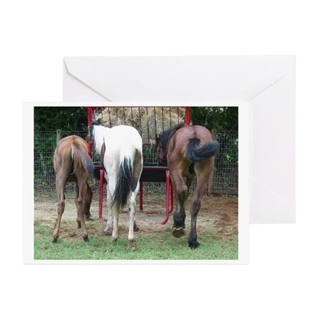 Hungry Horse Butts Greeting Cards (Pk of 10)