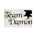 Team Damon Rectangle Magnet (100 pack)