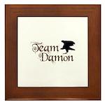 Team Damon Framed Tile