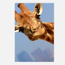 Unique Giraffe Postcards (Package of 8)