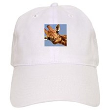 Cute Animals Baseball Cap