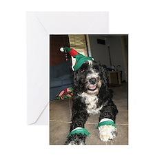 Cute Pwd christmas Greeting Card