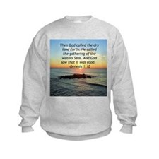 Cool Sacramento bands Shirt