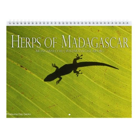 Herps of Madagascar 12-month Wall Calendar