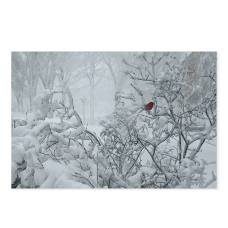 Winter Wonderland Postcards (Package of 8)
