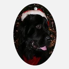 Newfoundland Dog Holiday Oval Ornament