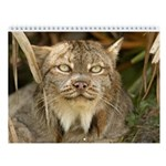 Canadian Lynx Wall Calendar