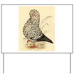 Tumbler Pigeon: Black Splash Yard Sign