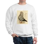 Tumbler Pigeon: Black Splash Sweatshirt