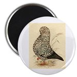 Tumbler Pigeon: Black Splash Magnet