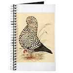 Tumbler Pigeon: Black Splash Journal