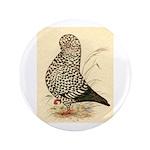 "Tumbler Pigeon: Black Splash 3.5"" Button (100"