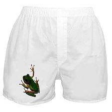 Treefrog Boxer Shorts