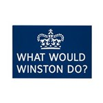 what would winston do Magnets
