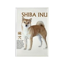 SHIBA INU Rectangle Magnet (10 pack)