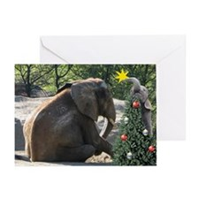 star Greeting Cards (Pk of 10)