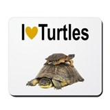 Box turtles Classic Mousepad