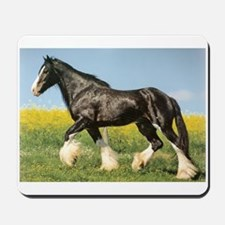 Shire Horse Draft Horse Lover Mousepad