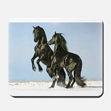 Friesian Stallions Friesians Horse Lover Mousepad