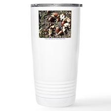 Acorns Travel Mug