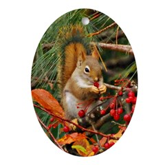 Christmas Squirrel Oval Ornament (oval)