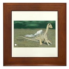 Giant Titanosaur Framed Tile