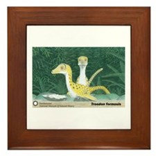 Troodon formosis Framed Tile