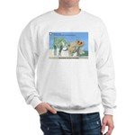 TrexTriceratops Sweatshirt