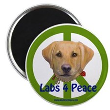 Labs 4 Peace-Yellow Magnet