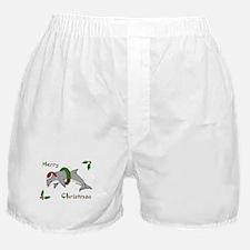 Christmas Dolphin Boxer Shorts