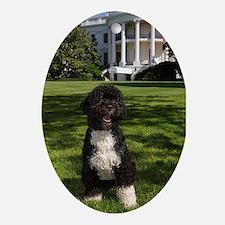 Bo the First Dog Ornament II