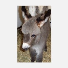 Mini Donkey Foal Horse Lover Rectangle Decal