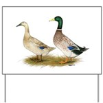 Ducks: Silver Welsh Harlequi Yard Sign