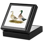 Ducks: Silver Welsh Harlequi Keepsake Box