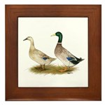 Ducks: Silver Welsh Harlequi Framed Tile
