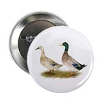 "Ducks: Silver Welsh Harlequi 2.25"" Button (10"