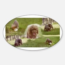 Poodle Town Oval Decal
