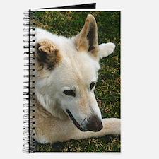 Big White GSD Journal