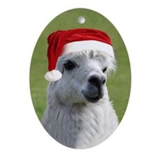 Alpaca Christmas Oval Ornament