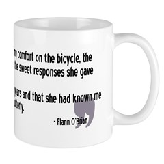 Bicycle Philosophy: How Can I Convey Perfection?