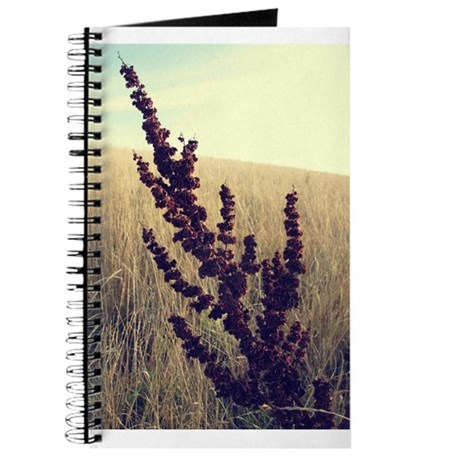 Only One Journal