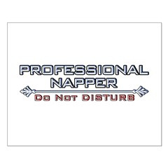 Professional Napper Posters