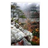 Cloudland canyon state park Postcards