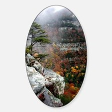 Cloudland Bliss Oval Decal