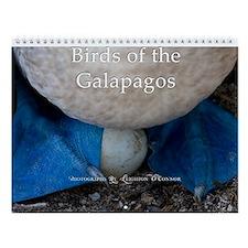 Galapagos Bird Calendar