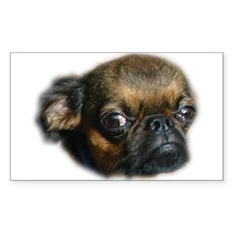 Smooth Brussels Griffon Rectangle Sticker