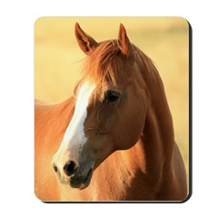 Horse, 1 , Mousepad